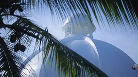 Tropical palm trees with white building. At sunny day stock footage