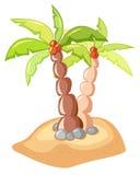 Tropical palms. Digital illustration of tropical palms Stock Photo