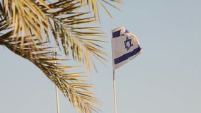 Tropical palms on the background of the flag of Israel, Israeli flag against the blue sky, shallow depth of field, sunny stock video
