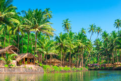 Tropical palms and bungalows Stock Images