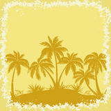 Tropical Palms and Grass Silhouettes Stock Photos