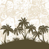 Tropical Palms and Grass Silhouettes Royalty Free Stock Image