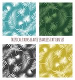 Tropical palms leaves seamless pattern set. Tropical palms leaves background. Nature palm tree summer seamless pattern, tropics foliage wallpaper, vector Royalty Free Stock Photo