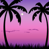 Tropical palms and moon landscape Royalty Free Stock Photos