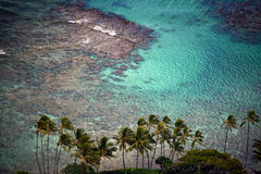 Tropical Palms in Paradise, Oahu Hawaii, Turquoise Ocean. Turquoise tropical waters cover coral at a palm-lined shore in paradisiacal Oahu, Hawaii Stock Photo
