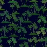 Tropical Palms Seamless Stock Photography