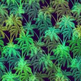 Tropical Palms Seamless Stock Photos