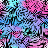 Tropical palms seamless pattern in colours Royalty Free Stock Photography