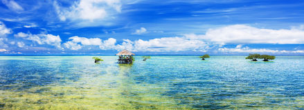 Tropical panorama royalty free stock images