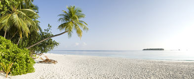 Tropical panoramic view of Ihuru Island Maldives Royalty Free Stock Images