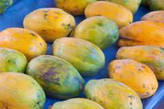Tropical Papayas Royalty Free Stock Photos