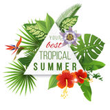 Tropical paper emblem with type design Stock Photo