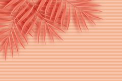 Tropical paper palm leaves frame. Summer tropical leaf. Origami. Exotic hawaiian jungle, summertime background. Paper cut. Minimal. Pastel art colorful style Stock Image