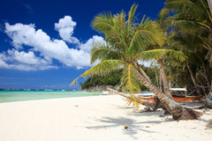 Tropical Paradise Stock Images