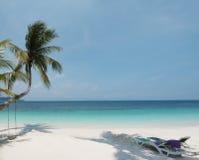 Tropical paradise Stock Image