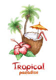 Tropical paradise. Watercolor illustration of coconut cocktail. Tropical paradise vector illustration