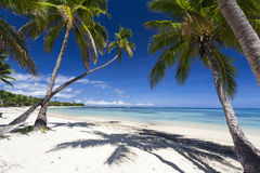 Free Tropical Paradise Royalty Free Stock Images - 30543109