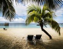 Tropical paradise. On the island of Roatan, Honduras Royalty Free Stock Photos