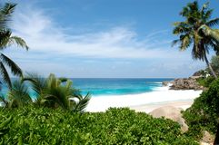 Free Tropical Paradise Stock Photos - 4875043