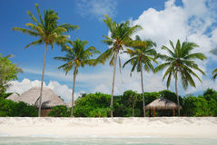 Tropical paradise. Beach resort in tropical paradise, view from the sea. Maldives Stock Photography