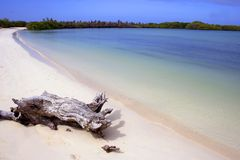 Tropical paradise beach Royalty Free Stock Photography