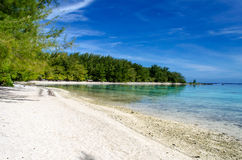 Tropical Paradise Beach. Tropical Beach at Moorea, French Polynesia royalty free stock image
