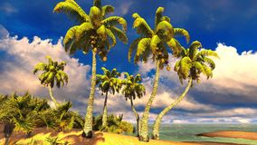 Tropical paradise beach Royalty Free Stock Photo