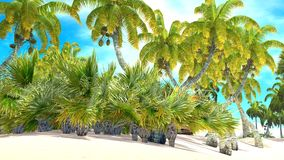 Tropical paradise beach Royalty Free Stock Photography