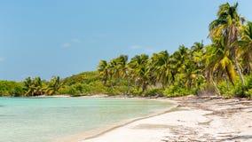 Tropical paradise Royalty Free Stock Photos