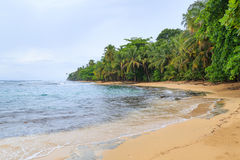 Tropical paradise beach Costa Rica Royalty Free Stock Photo