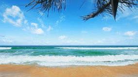 Tropical Paradise. Tropical beach in the morning stock footage