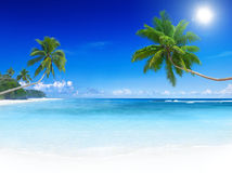 Tropical Paradise Beach. With palm trees Royalty Free Stock Photos