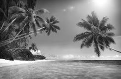 Tropical Paradise Beach Seascape Travel Destination Concept Stock Images