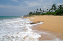 Tropical paradise  beach. Stock Photography