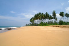 Tropical paradise  beach. Stock Photo