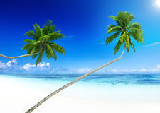 Tropical Paradise Beach Summer Vacation Seascape Concept Stock Image