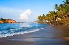 Tropical paradise beach on sunrise light. Tropical paradise beach with palms on sunrise light with blue water and dark sand Stock Image