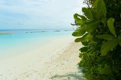 Tropical paradise 2 Stock Photos