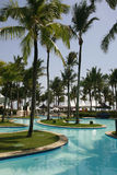 Pool and palm trees in bahia, brazil. Wonderful place in Bahia, Brazil stock photography