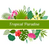 Tropical paradise card with stylized leaves and Stock Images