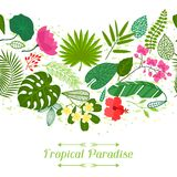 Tropical paradise card with stylized leaves and Stock Photography