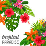 Tropical paradise card with stylized leaves and flowers.  Stock Images