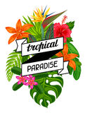 Tropical paradise card with stylized leaves and flowers. Image for advertising booklets, banners, flayers Stock Photography