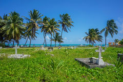 Tropical Paradise Caribbean Sea Sandy Beach stock image