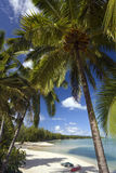 Tropical Paradise - The Cook Islands. Palm Trees and deserted beach in the South Pacific Paradise of Aitutaki in the Cook Islands Royalty Free Stock Photos
