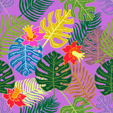 Tropical paradise. Ethnic textile collection. Stock Photo