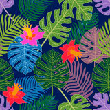 Tropical paradise. Ethnic textile collection. Royalty Free Stock Photography