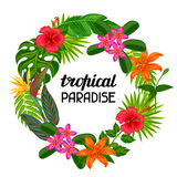 Tropical paradise frame with stylized leaves and flowers.  Stock Photo