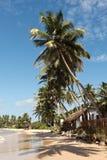 Tropical paradise idyllic beach Royalty Free Stock Images