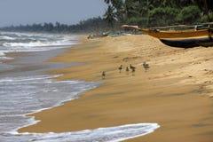 Tropical paradise idyllic beach Stock Images